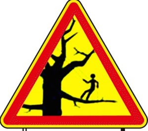 crbst_danger-elagage_202